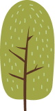 Tall tree icon